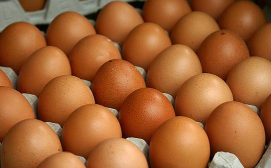 """蛋鸡""""歇伏""""遇上中秋旺季 鸡蛋上涨预期不变"""