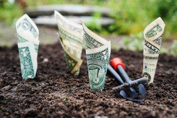 强势美元咆哮 新兴市场国家瑟瑟发抖