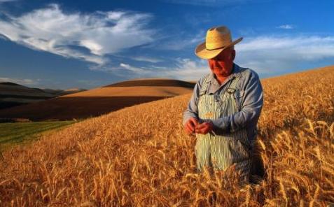 美国农民:路正越走越宽没想到赶上美国挑起经贸摩擦